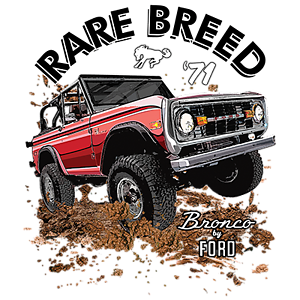 Rare Breed 71 Bronco by Ford